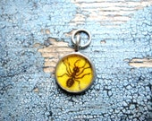 Ant Illustration Charm from Vintage Textbook