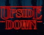 Upside Down- 5mL Perfume Oil