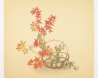 Japanese Maple and Chrysanthemums Ikebana Art, Vintage Botanical Art Print 1936 Japanese Flower Arrangement, Unique Floral Art Gift for Her