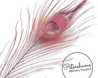 Dyed Peacock Feather for Millinery, Hat Making, Wedding Fascinators  Single Feather - Pink