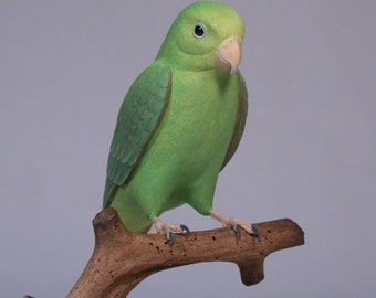 "5"" Green-rumped Parrotlet  Hand Carved Wooden Bird"