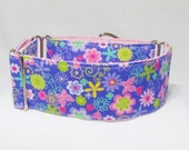 """2"""" Martingale Collar, Purple Flowers Butterfly Martingale, Whippet Iggys Designs Greyhound Collar 3/4"""" 1"""" 1.5""""Martingale, 2""""Martingale"""