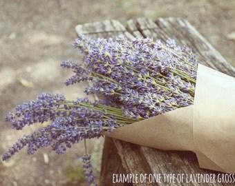 Lavender Flower Seed Plant Kit, Lavender Flower Garden Kit, planter, Dirt, Seeds, Custom Gift, Spring Gardening, Ecological Gift
