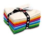 Brushstrokes by Pepper Cory Fat Quarter Bundle Studio E Quilting Cotton Fabric 16 Pieces