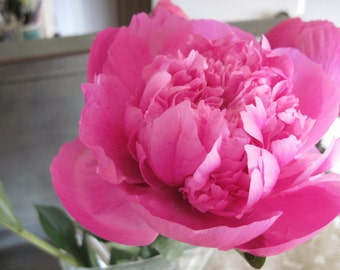 PINK PEONY   Dry Oil Body Spray  Natural Blendings Most Popular Product  in New Springtime Container Available in 2 sizes Custom Fragrance