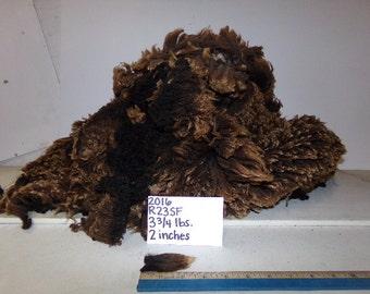 Black Half Black Merino Wool R23 SF 2016
