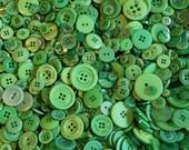 50 Green Buttons, Kelly Green, Emerald Green, Shamrock Green Assorted sizes Grab Bag  (1354)