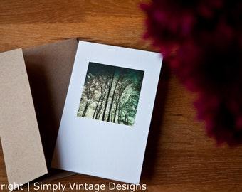 4x6 Blank Photo Card - Pencil Trees
