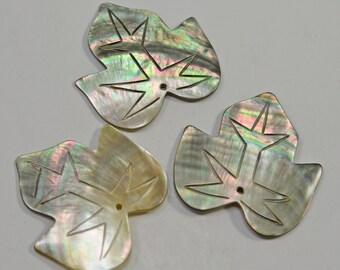 Black lip shell pendant, carved leaf, 40x42 - #0096