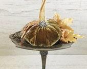 Velvet Pumpkin-Rich Antique Gold