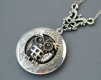 Owl Pendant Necklace,Owl Locket, Owl Locket Necklace, Owl Photo Locket Jewelry, Owl Jewelry Necklace,