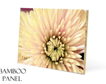 Wood Wall Art-20x30-Photo Mounted on Wood-Fine Art Photo-Eco Friendly Artwork-Floral Wall Decor-Bamboo Panel-Flower Photograph-Yellow & Pink