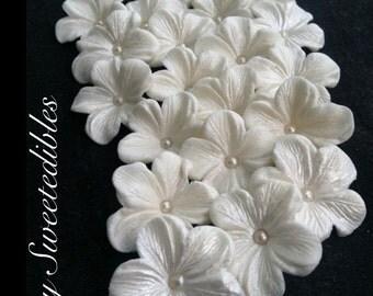 GUMPASTE Cake Decorations WHITE Gum Paste Blossoms 25 piece