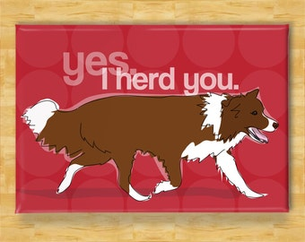 Red Border Collie Fridge Magnet - Yes, I Herd You - Chocolate Brown Lilac Border Collies