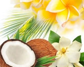ALOHA - 4oz - Perfume for Women Floral Fruity Fragrance Family / Main Accords; Sweet, Fruity , Tropical, Floral