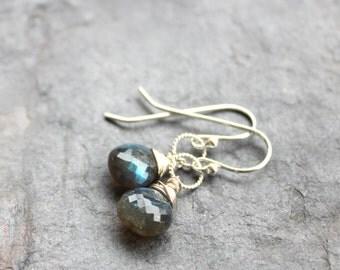 Petite Labradorite Earrings Sterling Silver Grey Briolette Stone Earrings