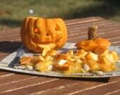 Miniature Pumpkin, Jack-o-Lantern