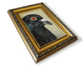 Connor the Pigeon, larger than life pigeon painting
