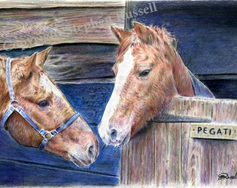 Pegati - Horse Racing LARGE A4 A3 or A2 Limited Edition Print of original color pencil drawing by Steve Russell of RussellArt