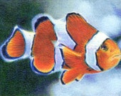 "Original ACEO - Clownfish - 2.5"" x 3.5"" Unique Artwork - Free Shipping - Portion of Proceeds to Charity"