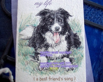 my life ( a best friend's song ) border collie/love my border collie/storybook/personalize /sentimental /unique empathy condolence cards