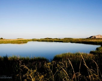 Blue Sky Blue Lake Photography Natural Attractions Beautiful Place in Denmark Autumn Landscape Yellow Green Grass Reeds Calm Scenery - P051