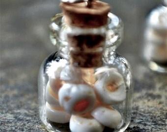 Tiny Glass Bottle, Puka Shells, Tiny Vial ~ 1 Small Bottle of Hawaiian Shells, Novelty Gift, Tiny Wearable Corked Bottle for Beach Lovers