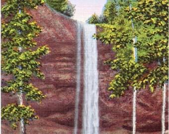 Silver Creek Falls, Silver Falls State Park, Oregon - Linen Postcard - Unused (H)