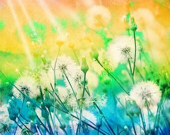 Dandelion art,dandelion poster,wishes,make a wish,whimsical,nursery art,turquoise,sunshine,sun rays,flowers,garden,rainbow,home decor,