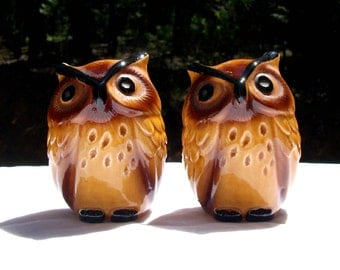 Owl Salt and Pepper Shakers Vintage 1970's With Original Stoppers