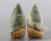 Jasper Natural Earring Pair Earth Tone, Stunning Jewelry Setting Cabochons Set of Two Loose Stone Jewels (CA4507)