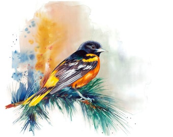 "11x14"" Baltimore Oriole Bird Watercolor Giclee Fine Art Print [Watercolor Bird Portrait Print, Oriole Print, Oriole Bird Art, Watercolor]"