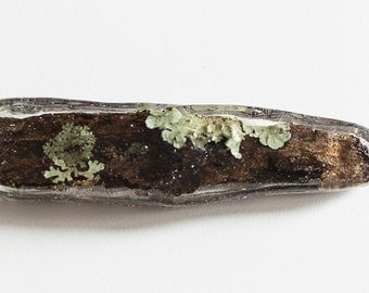Brooch, real lichens on pine wood of the Italian alps in resin