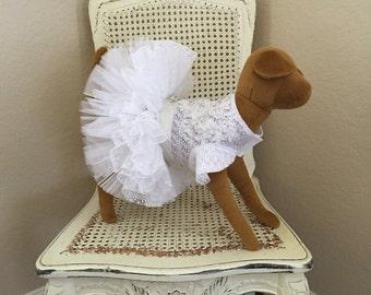 Coup de Foudre Dog Dress, Daisy White