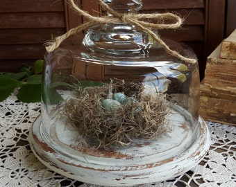 French Country Decor, Vintage Glass Cloche Display Dome with Wood Base, Distressed, Rustic Home Decor, Shabby Chic, Cottage Chic Decor
