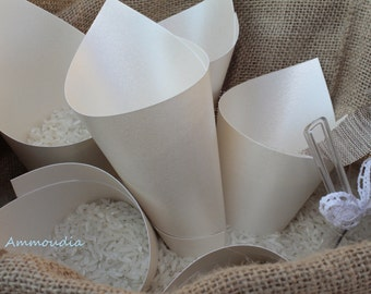 Rice cones - wedding- petal cones