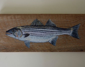 Striped Bass on Barnwood