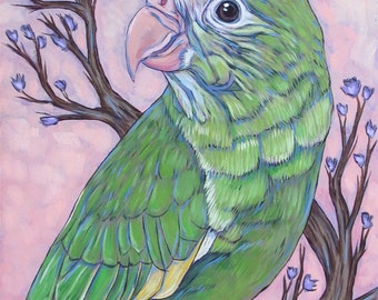 """Custom Pet Portrait Painting on Canvas 11"""" x 14"""" in Acrylics of One Bird, Parrot, Parakeet, Canary, Dog, Cat, etc. Ready to Hang OOAK Art."""