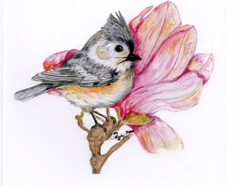 Titmouse and Flower giclee print