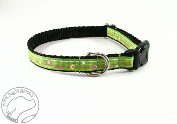 """Fun Lime Striped Dots Dog Collar - 1/2"""" (13mm) wide - your choice of style and size / Pink Stripe / Green Stripe"""
