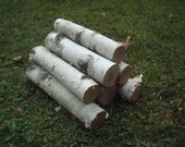 WHITE paper BIRCH LOG real wood fresh reclaimed organic natural from New England
