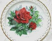 20% Heart Sale American Spirit Collectible Plate-The American Rose Garden-Paul Sweany