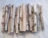 White birch branches decorative logs Adirondack cabin decor rustic camp decor