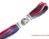 DMC 4512 Coloris Variegated 6 Strand Floss United States