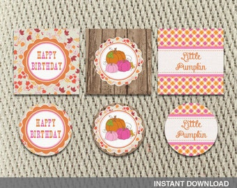 Favor Tags - Stickers - Vintage-Rustic - Leaves and Autumn Hayride - Farm -Fall-Pumpkin-Birthday- Instant Download - DIY Digital Decorations