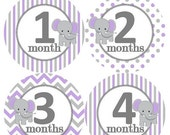 Baby Monthly Milestone Growth Stickers Grey Lavender White Elephant Nursery Theme MS249 Baby Boy Girl Shower Gift Baby Photo Prop