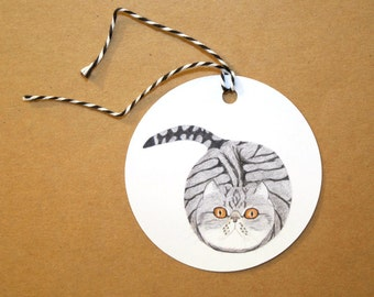 Funny Cat Gift Tags - Set of Six Grey and White Tabby Cat GIFT TAGS