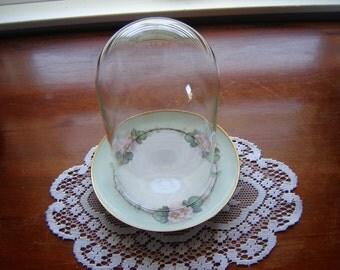 Vintage dome cloche en verre  glass globe display globe with antique plate 2 pc set Austrian plate terrarium globe dome