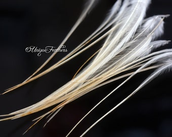 Light Ginger Rooster Hackle Natural Craft Feathers Thin Stiff Webby Fly Tying Material Hebert Cape Feathers Blonde Golden Craft Feathers, 24