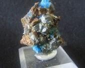 Mineral Specimen - Chalcanthite (primary) crystals, Chalcopyrite - The Planet Mine, La Paz Co., Arizona - Geology - NearEarthExploration